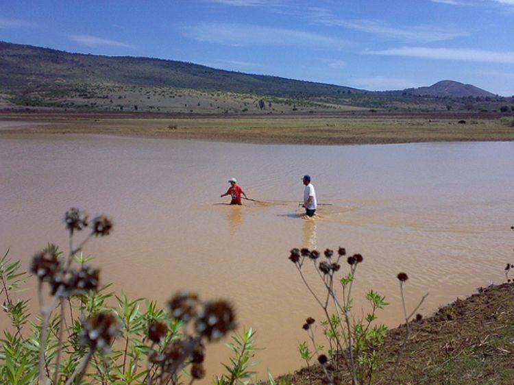 Informaci n de m xico viajes y turismo explorando mexico for Villas tortuga celestino sinaloa